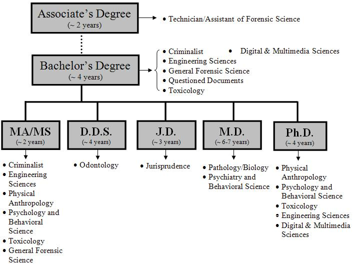 Forensic Science bachelor degree examples